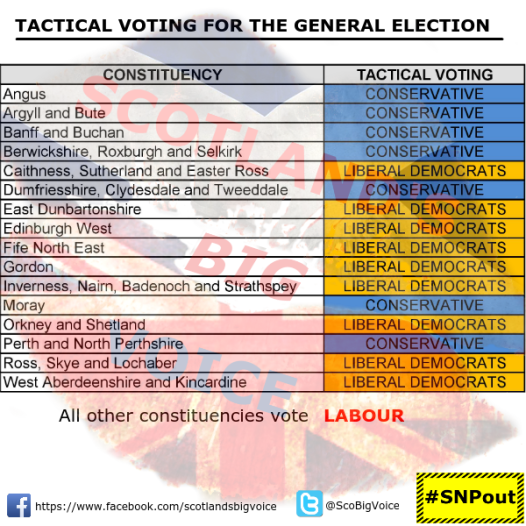 tactical_voting_compact